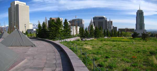 Green roof in Salt Lake City, Utah, with mountain and prarie meadows