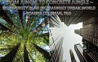 jungle-to-concrete-jungle-biodiversity
