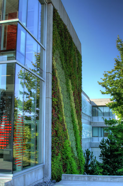 Green wall on Blusson Hall, Simon Fraser University, Burnaby, British Columbia, Canada